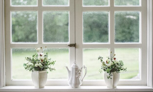 Flere får pudset vinduer